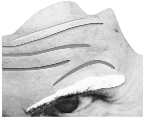 "John Baldessari. ""Raised Eyebrows, Furrowed Foreheads"""
